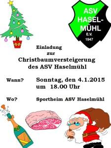 Christbaumversteigerung2015
